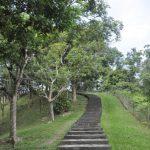 Bukit Aup Jubilee Park