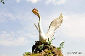 Swan of Sibu
